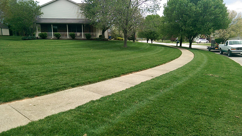 Lawn Care Bloomington - May 1st, 2014