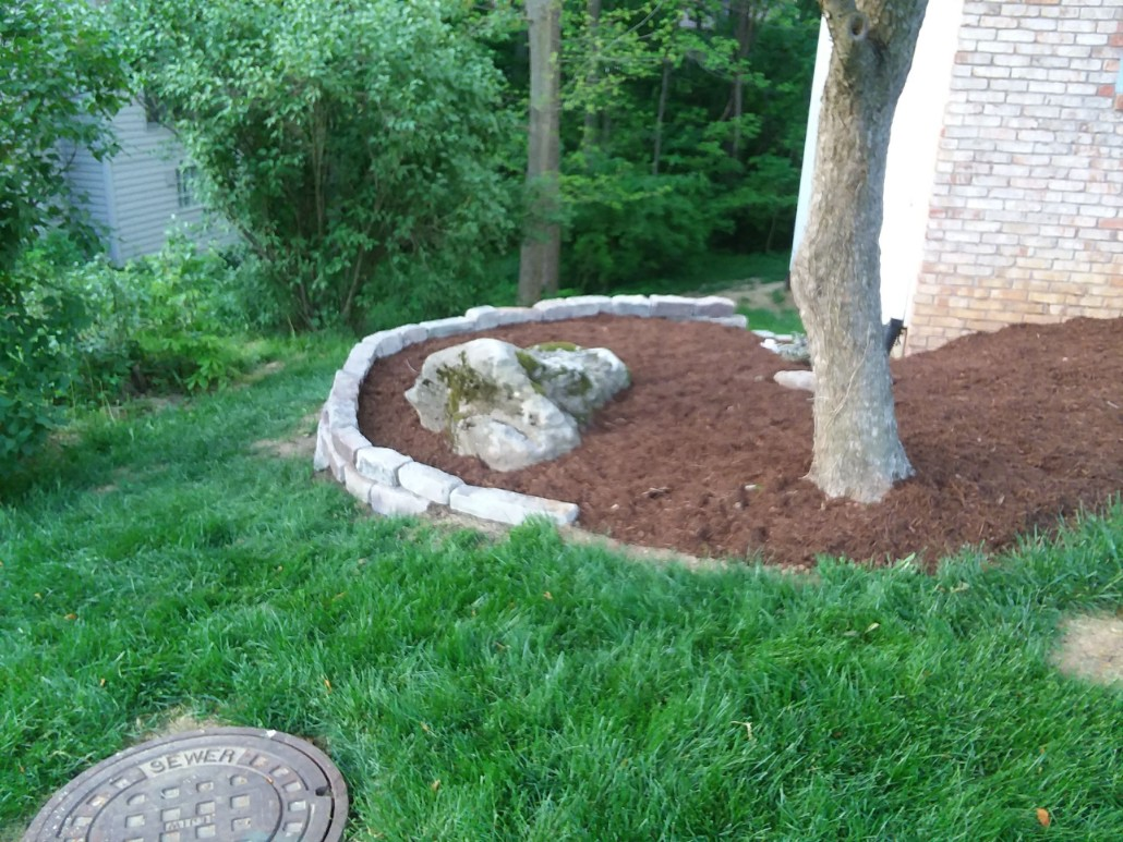 Lawn Care Bloomington